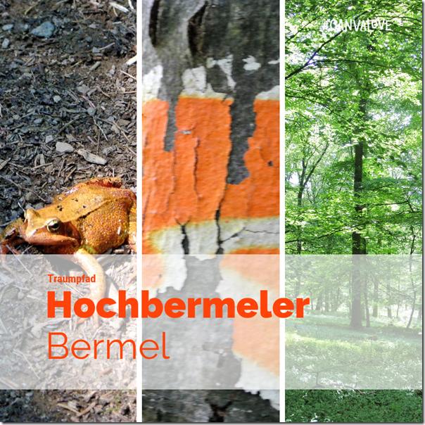 Traumpfad Hochbermeler - Teaser
