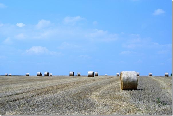 Traumpfad Hatzenporter Laysteig - Blick über Felder