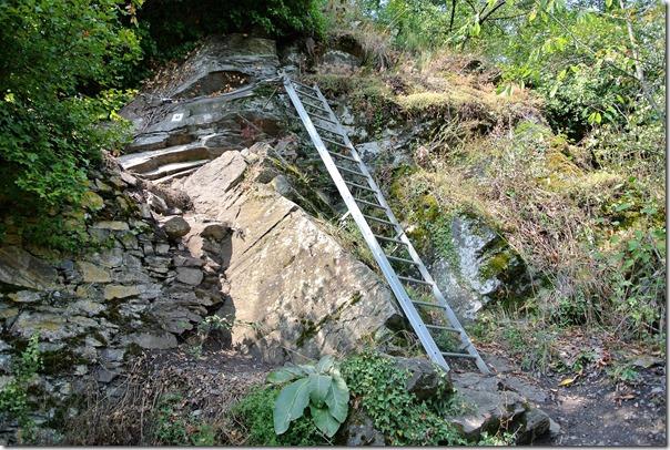 Traumpfad Hatzenporter Laysteig - Leiter auf dem Kletterfpfad