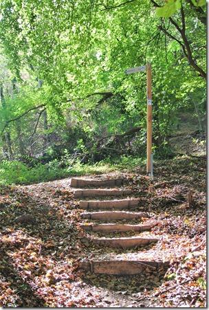 Traumpfädchen Spayer BlickinsTal - Treppe im Wald