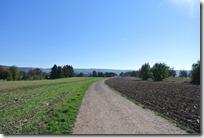 Traumpfädchen Spayer BlickinsTal - Durch Wiesen und Felder